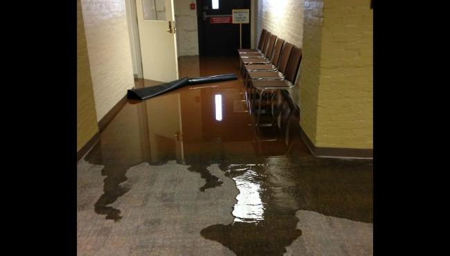 & Water Damage